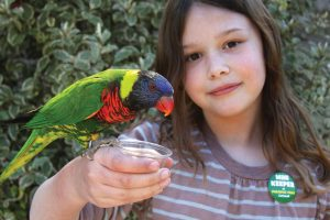 girl with Lorikeet