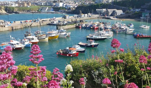 Newquay harbour and view