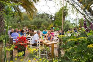 Eden Project cafe