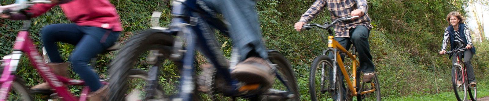 bikes on Camel Trail