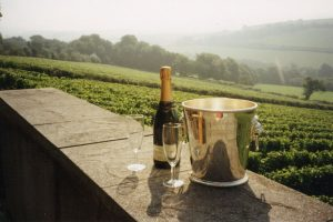 Camel Valley wine