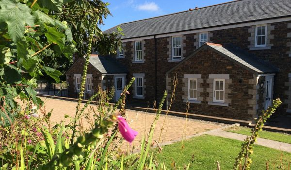 cottages and foxgloves