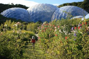 biomes in gardens