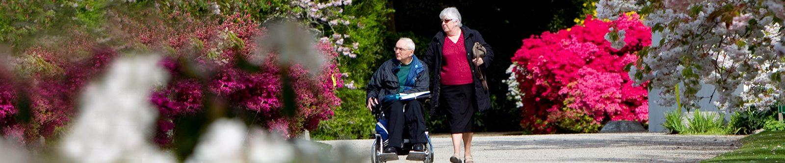wheelchair user in gardens