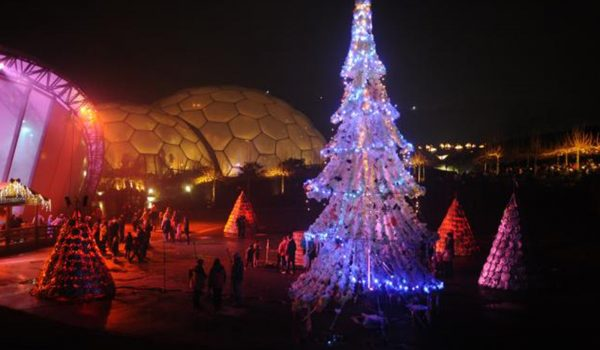 christmas tree at eden